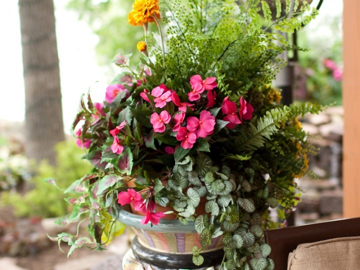 Pink flowers and plants in vase