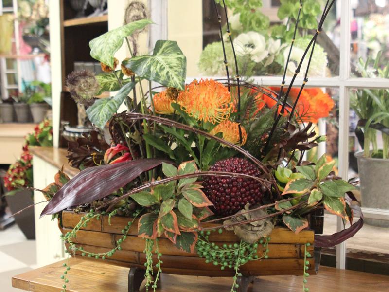 Portfolio Wisteria Flowers And Gifts