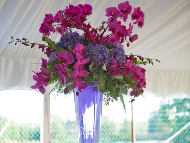 Vase of purple flowers