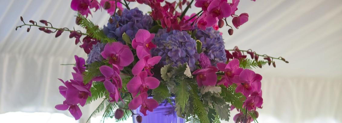 portfolio-fresh-flowers